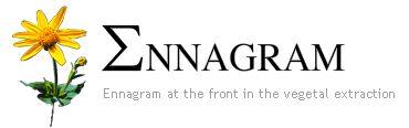 Ennagram - logo